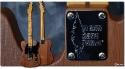 Fender_Telebration_Redwood
