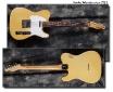 Fender_Telecaster_1969