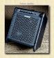 Fishman Loudbox 100 Front View 2
