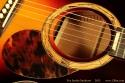 Fox-Jumbo-Sunburst-2012-rosette-1