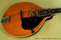 Gibson A-1 Mandolin, 1916 top