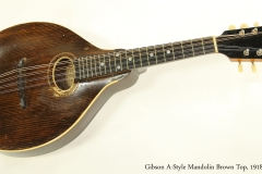 Gibson A-Style Mandolin Brown Top, 1918  Full Front View