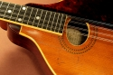 gibson-a1-1912-cons-top-detail-1
