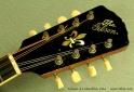 Gibson a-4 mandolin 1914 head front