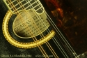 Gibson a-4 mandolin 1914 label