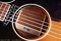 gibson-cf100e-ss-stamp-1