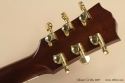 Gibson CJ-165 2007 head rear