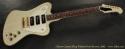 Gibson Custom Shop Non-Reverse Firebird 2003 full front view