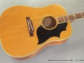 Gibson Country Western 1965 top