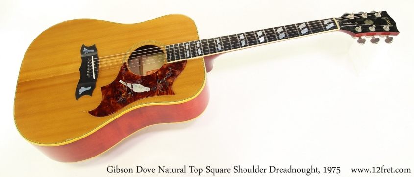 Gibson Dove Natural Top Square Shoulder Dreadnought, 1975 Full Front View