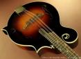 gibson-f5g-2012-top-angle-1