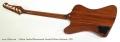 Gibson Firebird Bicentennial Limited Edition Sunburst, 1976 Full Rear View