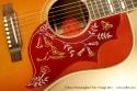 Gibson Hummingbird True Vintage 2011 pickguard