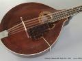 Gibson Mandocello Style K1 1921 top