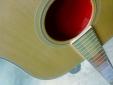 Gibson-Montana-Tour-2012-117
