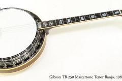 Gibson TB250 Mastertone Tenor Banjo, 1969 Full Front View