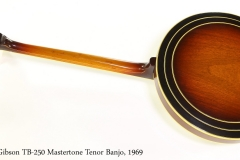 Gibson TB250 Mastertone Tenor Banjo, 1969 Full Rear View