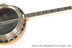 Gibson TB 3 Mastertone Tenor Banjo, 1927-28  Full Front View