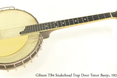 Gibson TB4 Snakehead Trap Door Tenor Banjo, 1924 Full Front View