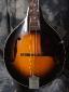 Gibson_A1-Mandolin_41-43(C)_Top