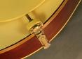 Gibson_a3_1920_pickguard_mount_1