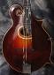 Gibson_F2-Mandolin_1929-(C)_Top
