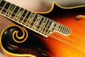 Gibson_F5_mandolin_74_cons_fingerboard_detail_1