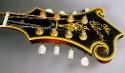 Gibson_F5_mandolin_74_cons_flowerpot_1