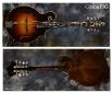 Gibson_F5G Mandolin(C)