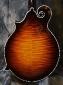 Gibson_Fern_F5L_Back