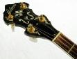 Gibson_granada_banjo_1991_cons_head_front_1