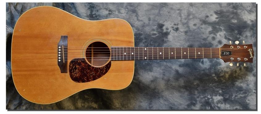 Gibson_J-50_1970(C)