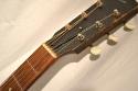 Gibson_L-1_1931(C)_Nut