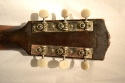 Gibson_L-1_1931(C)_Tuners