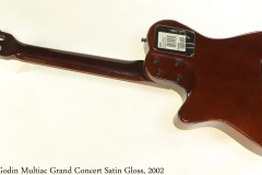 Godin Multiac Grand Concert Satin Gloss, 2002 Full Rear View