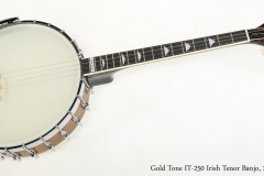 Gold Tone IT-250 Irish Tenor Banjo, 2016   Full Front View