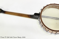 Gold Tone IT-250 Irish Tenor Banjo, 2016   Full Rear View
