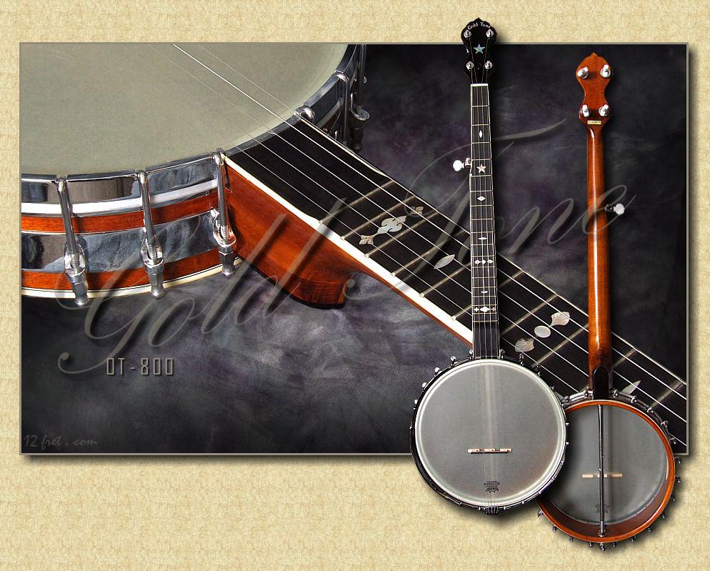 Gold Tone OT-800 Banjo - www 12fret com