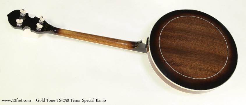 Gold Tone TS-250 Tenor Special Banjo  Full Rear VIew