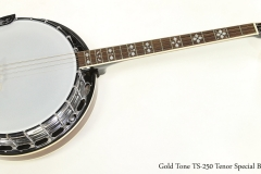 Gold Tone TS-250 Tenor Special Banjo  Full Front View