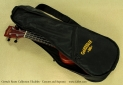 Gretsch Roots Collection Ukuleles gig  bag
