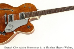 Gretsch Chet Atkins Tennessean 6119 Thinline Electric Walnut, 1966 Full Front View