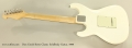 Don Grosh Retro Classic Solidbody Guitar, 1999 Full Rear View