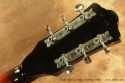 Guild A50 Cordoba Archtop1966 head rear