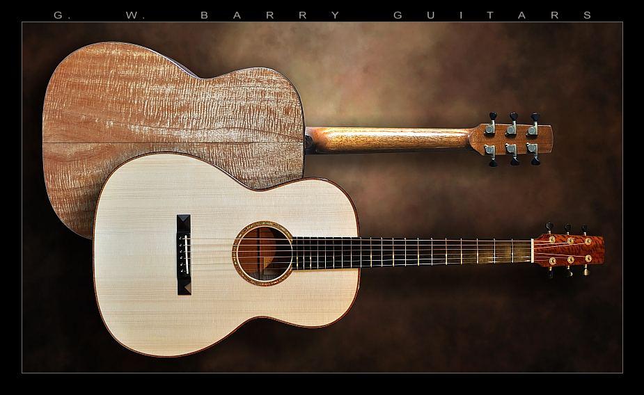 G. W. Barry Hand Built Guitars Top Back