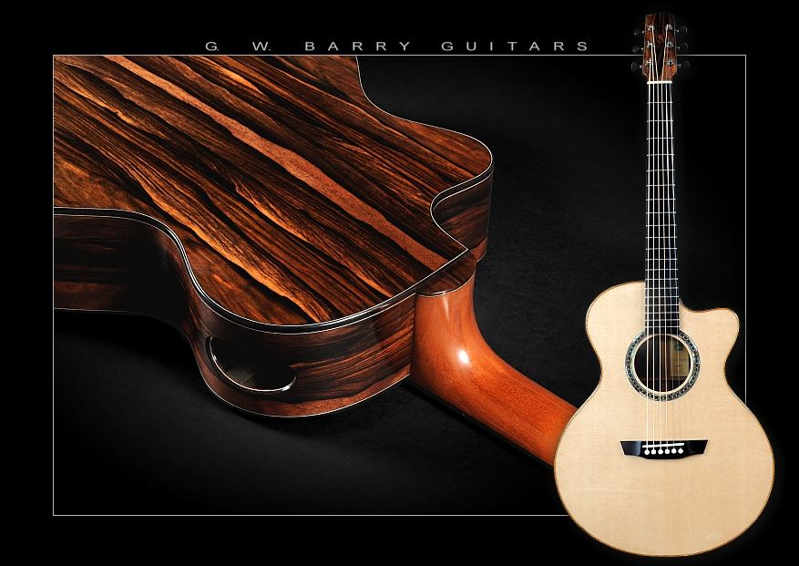 G. W. Barry Hand Built Guitars  Back and Front