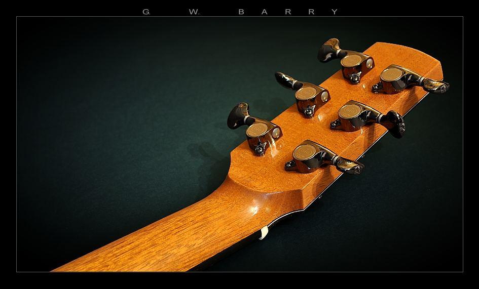 G. W. Barry Hand Built Guitars Peghead