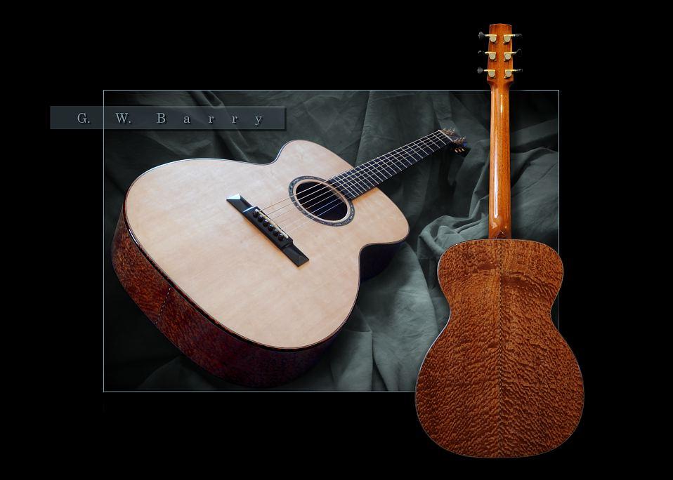 G. W. Barry Hand Built Guitars Full Back