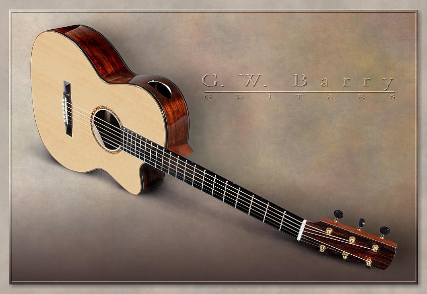 G. W. Barry Hand Built Guitars Cutaway