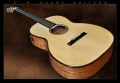 G. W. Barry Hand Built Guitars Angled Front